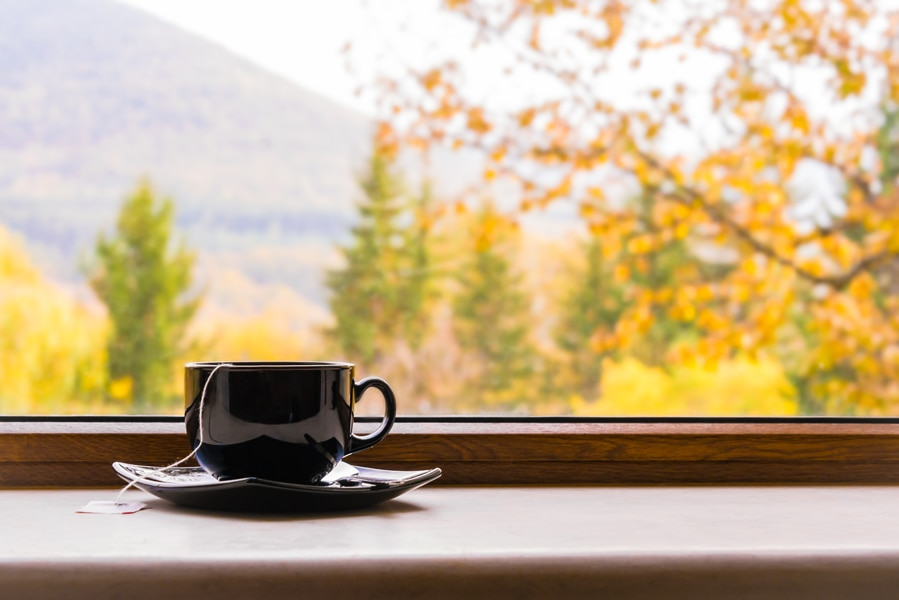 A cup of tea in front of a window with autumn view. Fall indoor air quality (IAQ).